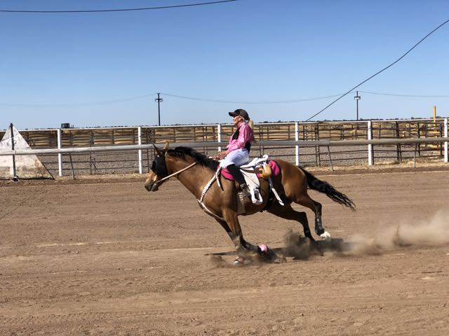 Brunette Downs Races And Rodeo Free Fabulous Amp Almost